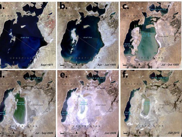 International Symposium on Ecological Restoration and Management of the Aral Sea